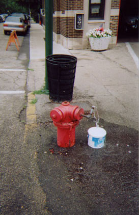 Most Famous Fire Hydrant in the World